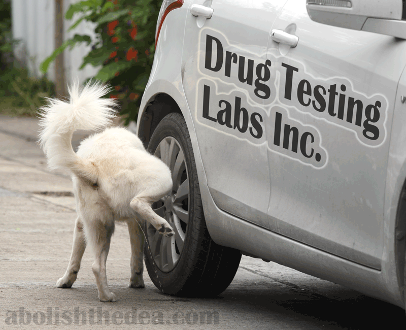 Drug Testing Sucks