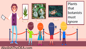 kids learn to identify the plants that they are not allowed to study
