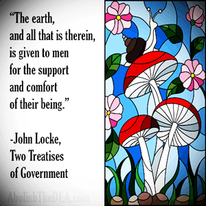 John Locke said: 'The earth, and all that is therein, is given to men for the support and comfort of their being.' Therefore the Drug War is a violation of natural law and usurps the US Constitution.