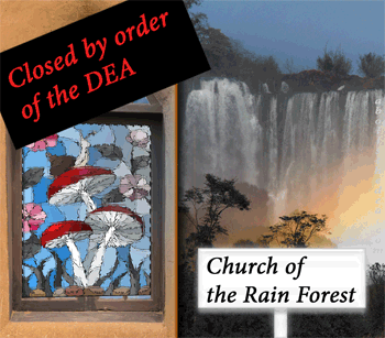 Church of the Rain Forest, closed by the DEA. Found not to be a genuine religion by pen-pushers in Washington, DC.