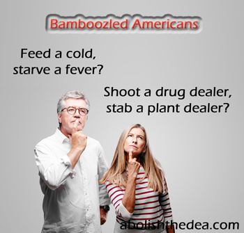Feed a cold, starve a fever, shoot a drug dealer?