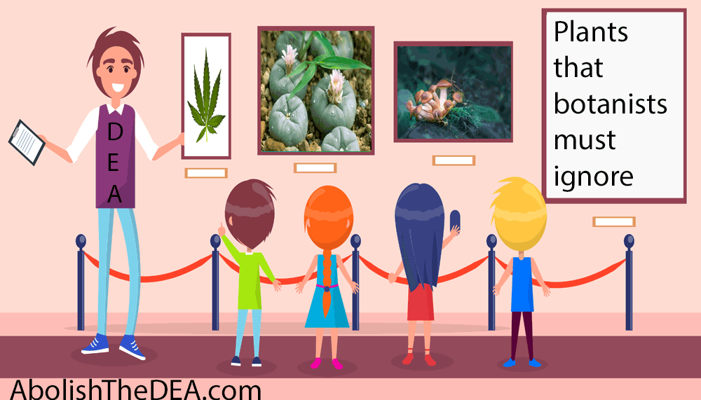 How the drug war promotes drug abuse
